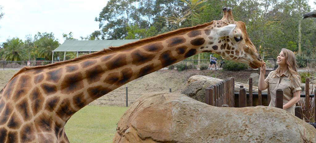 Bindi Irwin Australia Zoo