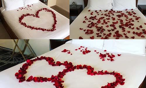Rose petal options scattered on bed